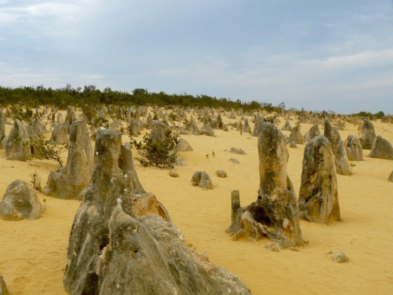 Pinnacle Desert West Australië