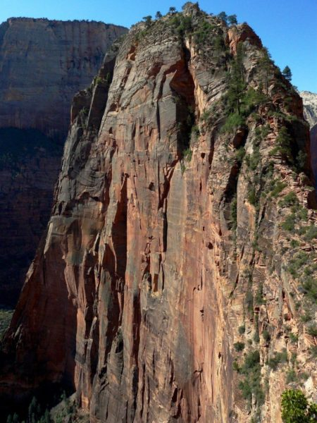Top-van-Angels-Landing