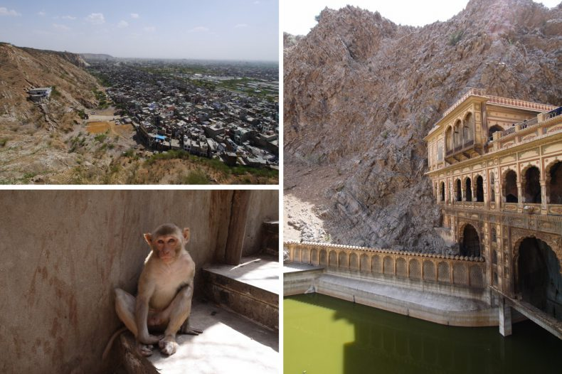 monkey-temple-jaipur