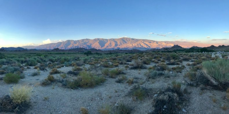 Lone Pine view