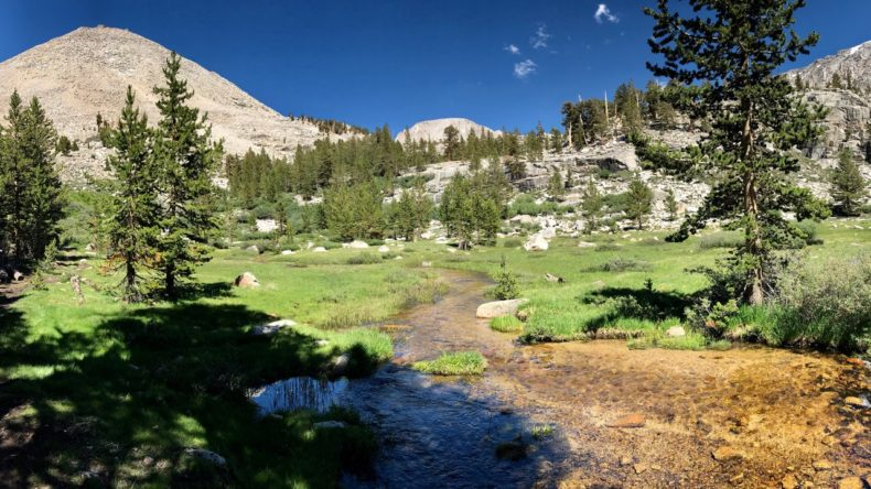 Timberline Creek