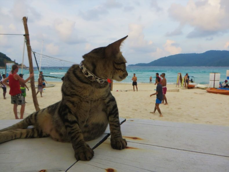 volleybal-perhentian-strand