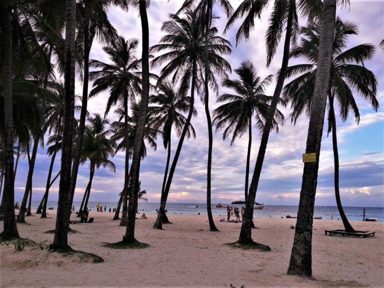 San_Andres_ElCentro_Strand_Palmbomen_Colombia
