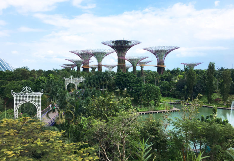 singapore-bezienswaardigheden-gardens-by-the-bay