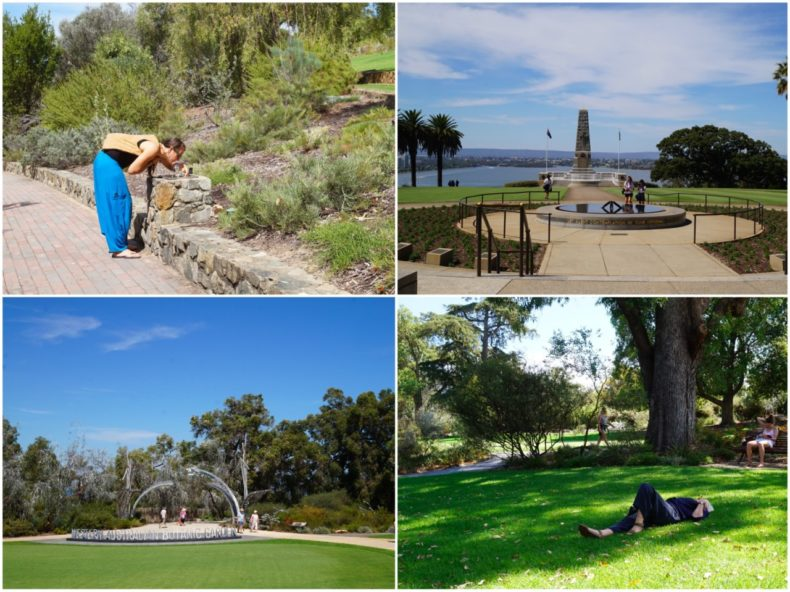 Kings_Park_Perth_Australie