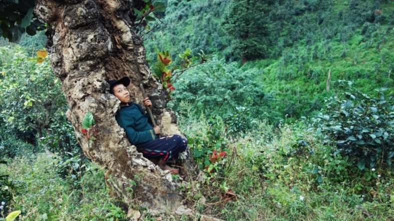 Hike-Hsipaw-Shan-State